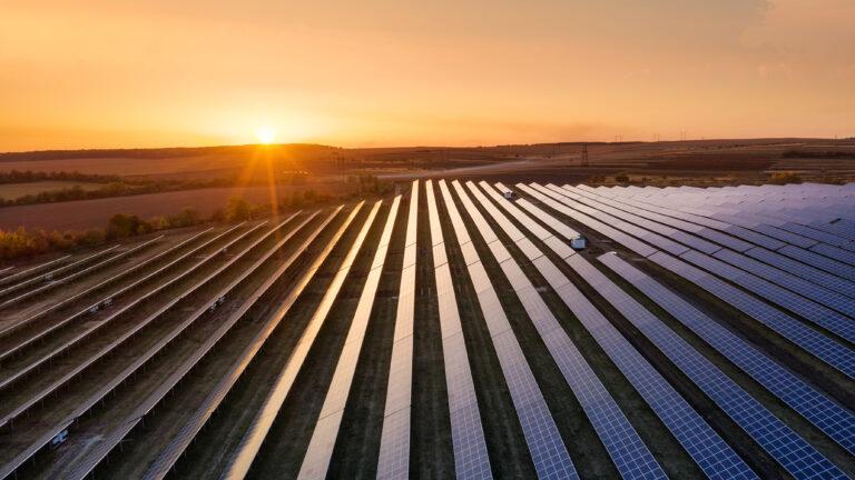 "ASSOTUSCANIA: insieme a 14 associazioni ambientaliste nella ""Coalizione per il paesaggio"""